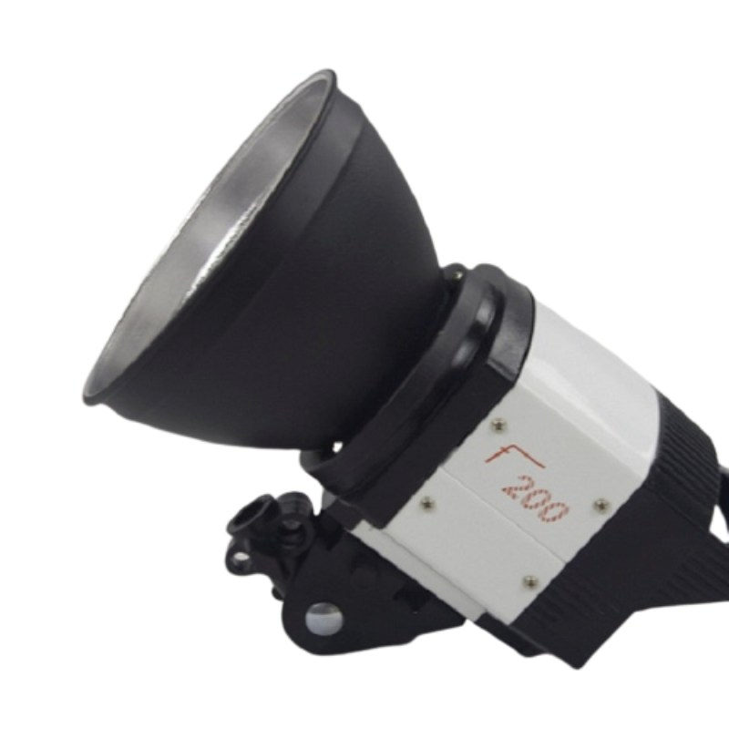 den-flash-studio-f200-200w